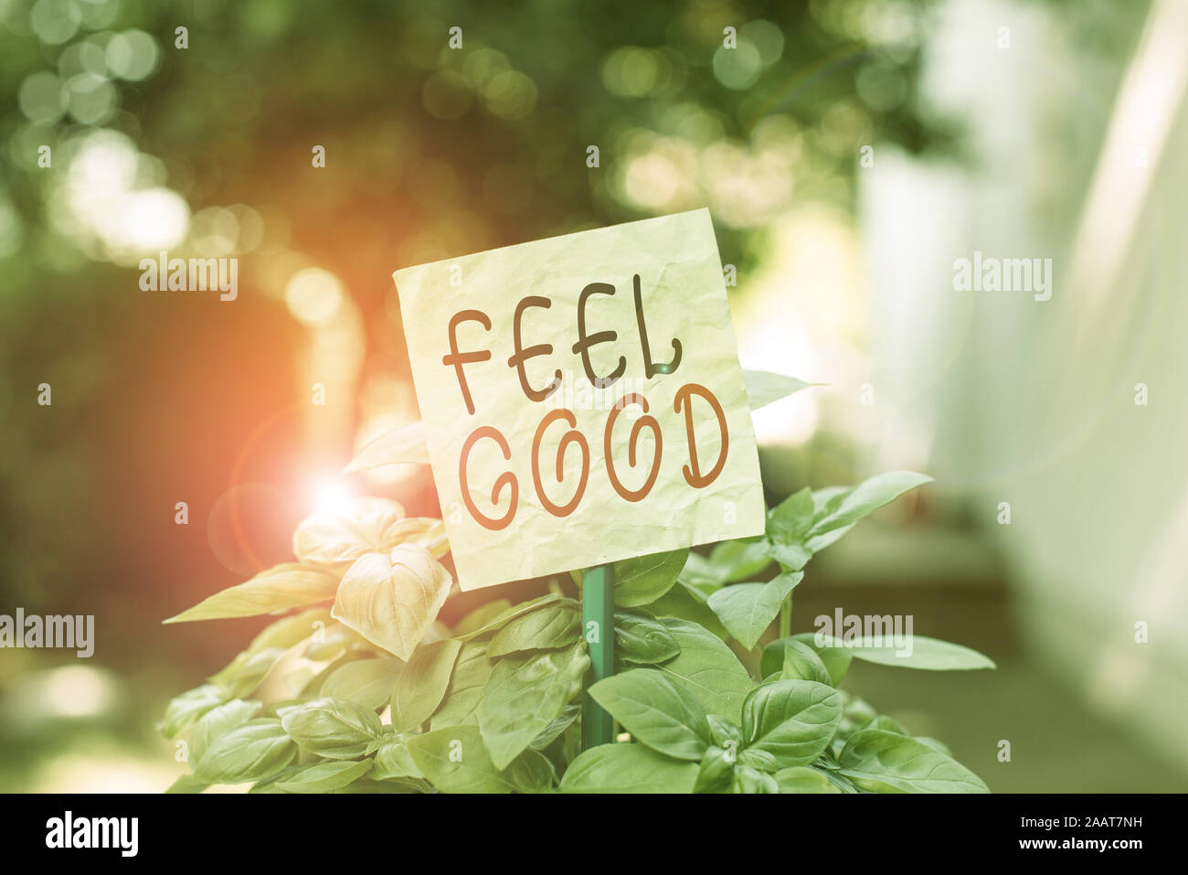 Text sign showing Feel Good. Business photo text relating to or promoting an often specious sense of satisfaction Plain empty paper attached to a stic Stock Photo
