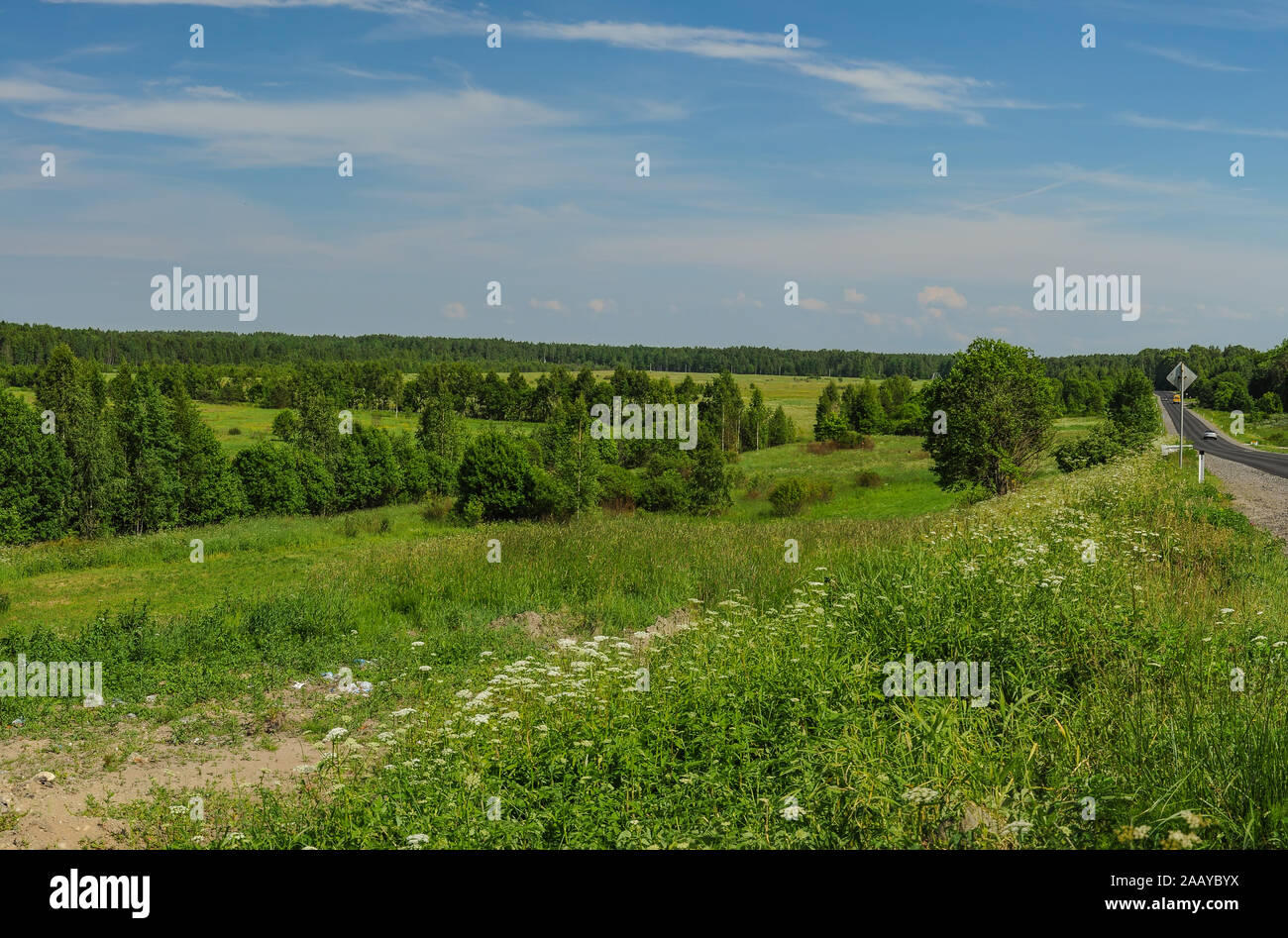 Sunny summer day in Leningrad region. Stock Photo