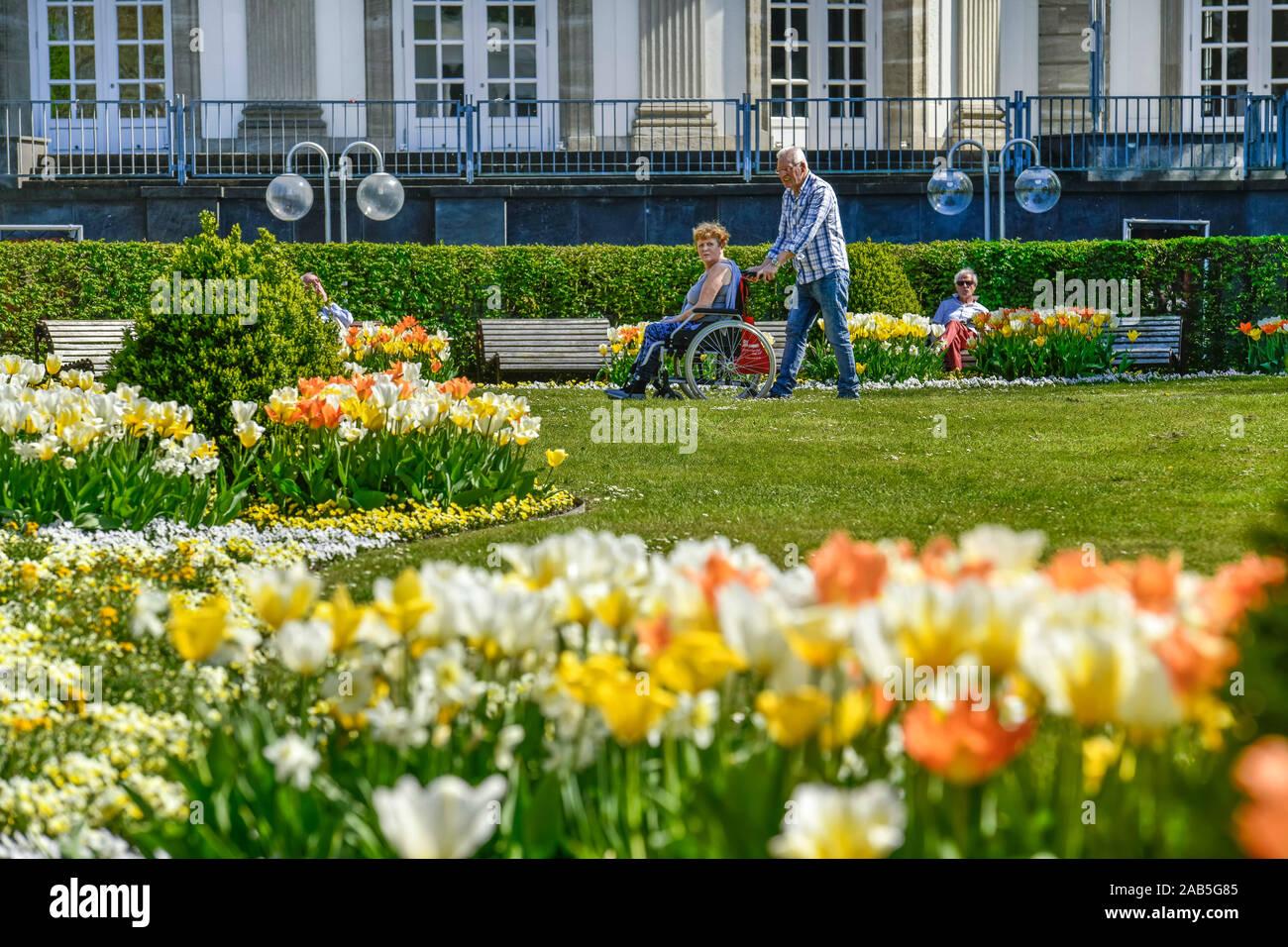 Spaziergänger, Kurpark, Bad Oeynhausen, Nordrhein-Westfalen, Deutschland Stock Photo