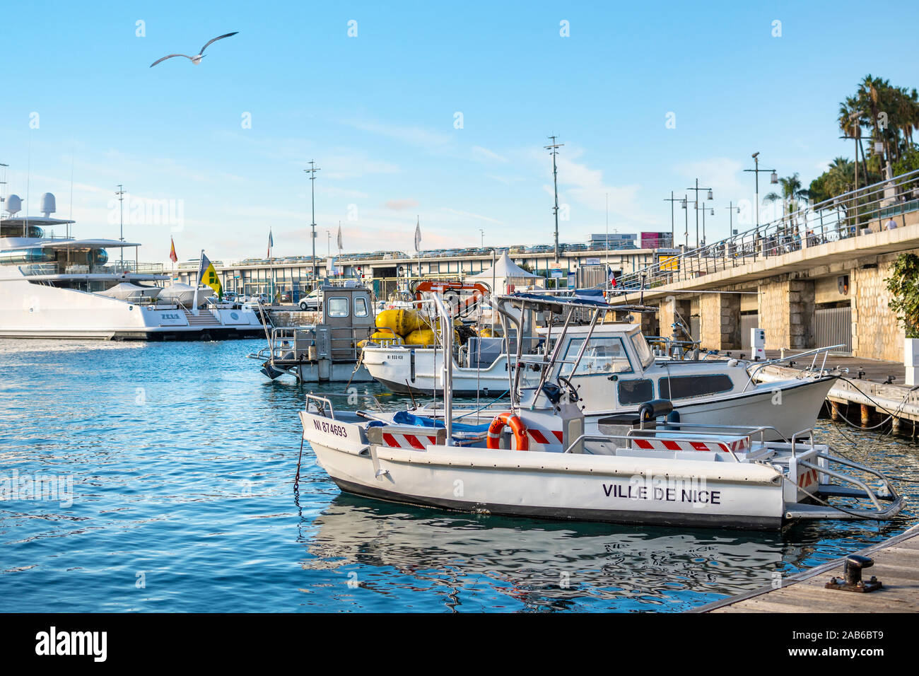 A seagull flies over the boats docked at the Old Port in the Mediterranean city of Nice France on the French Riviera. Stock Photo
