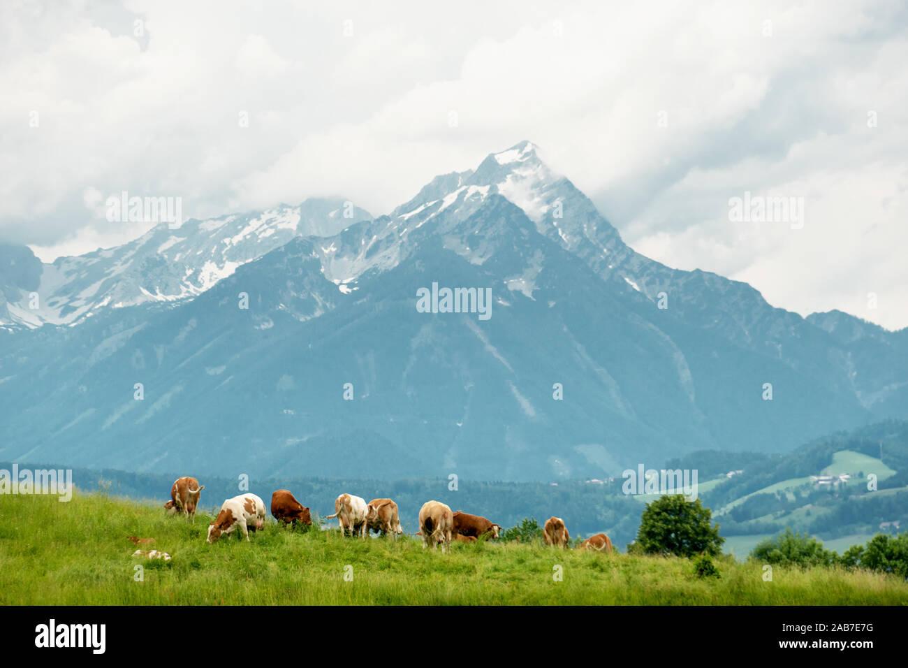 Warscheneck Stock Photo