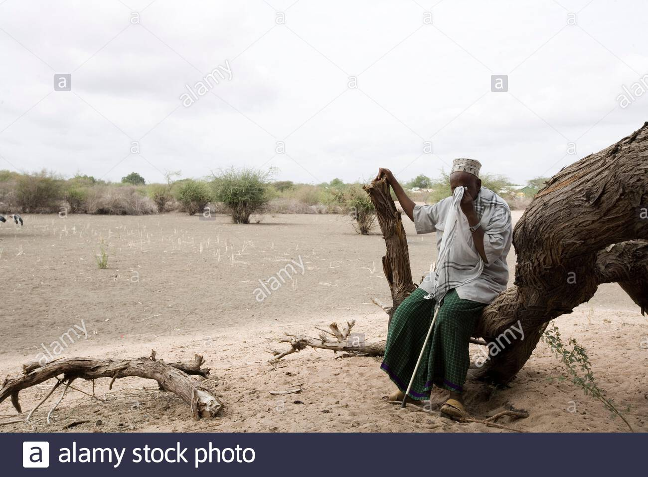Kenya - Dadaab - 24th July 2011. Mohammed Ahmed Shuria, 60 years old, sitting in his field inside Hagadera refugee camp where he arrived in 1991, when the war started in Somalia. Due to the drought his field has been unproductive for the past 2 years. Bef Stock Photo