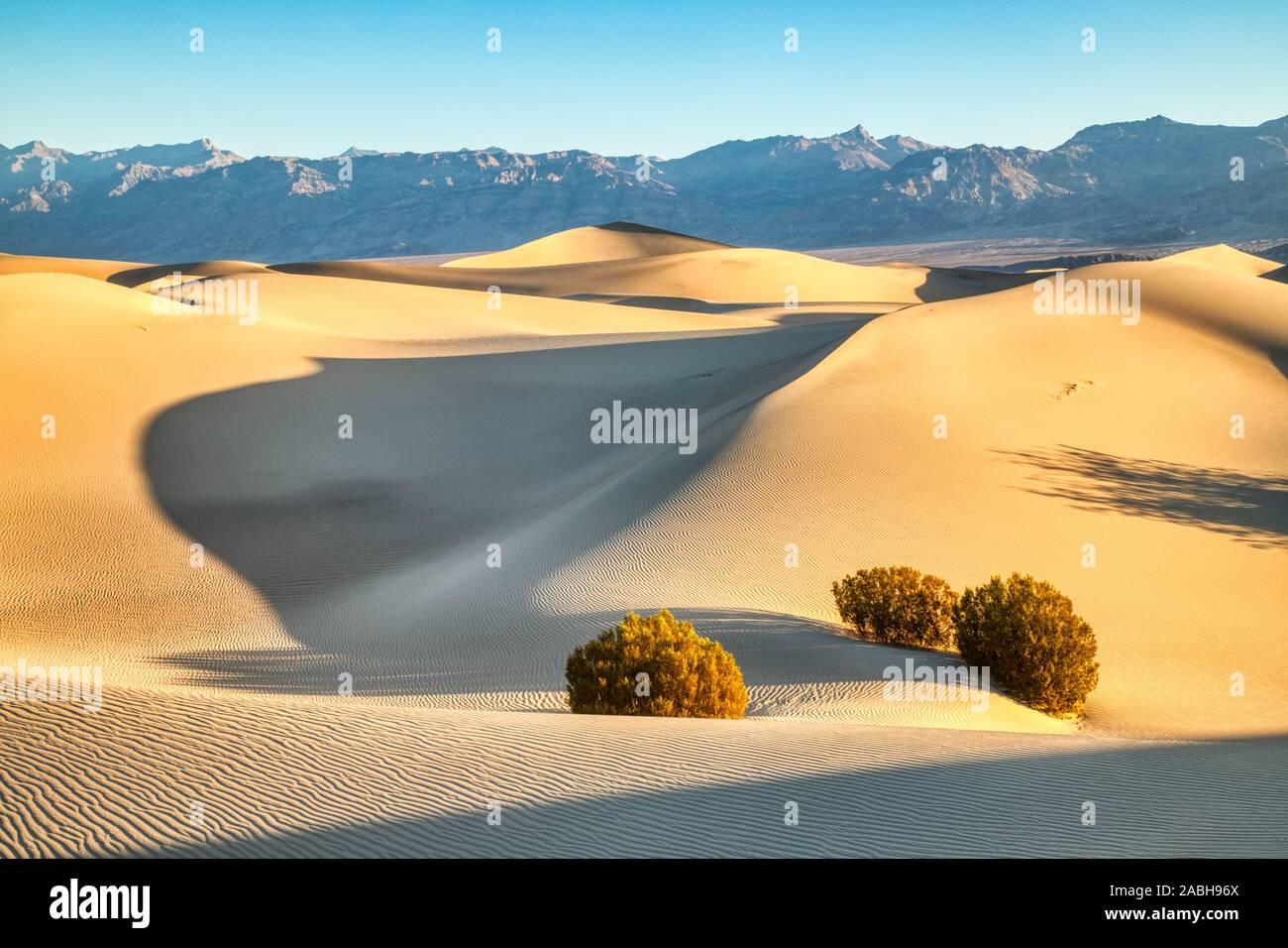 Mesquite Dunes in Death National Park at Sunrise, California Stock Photo