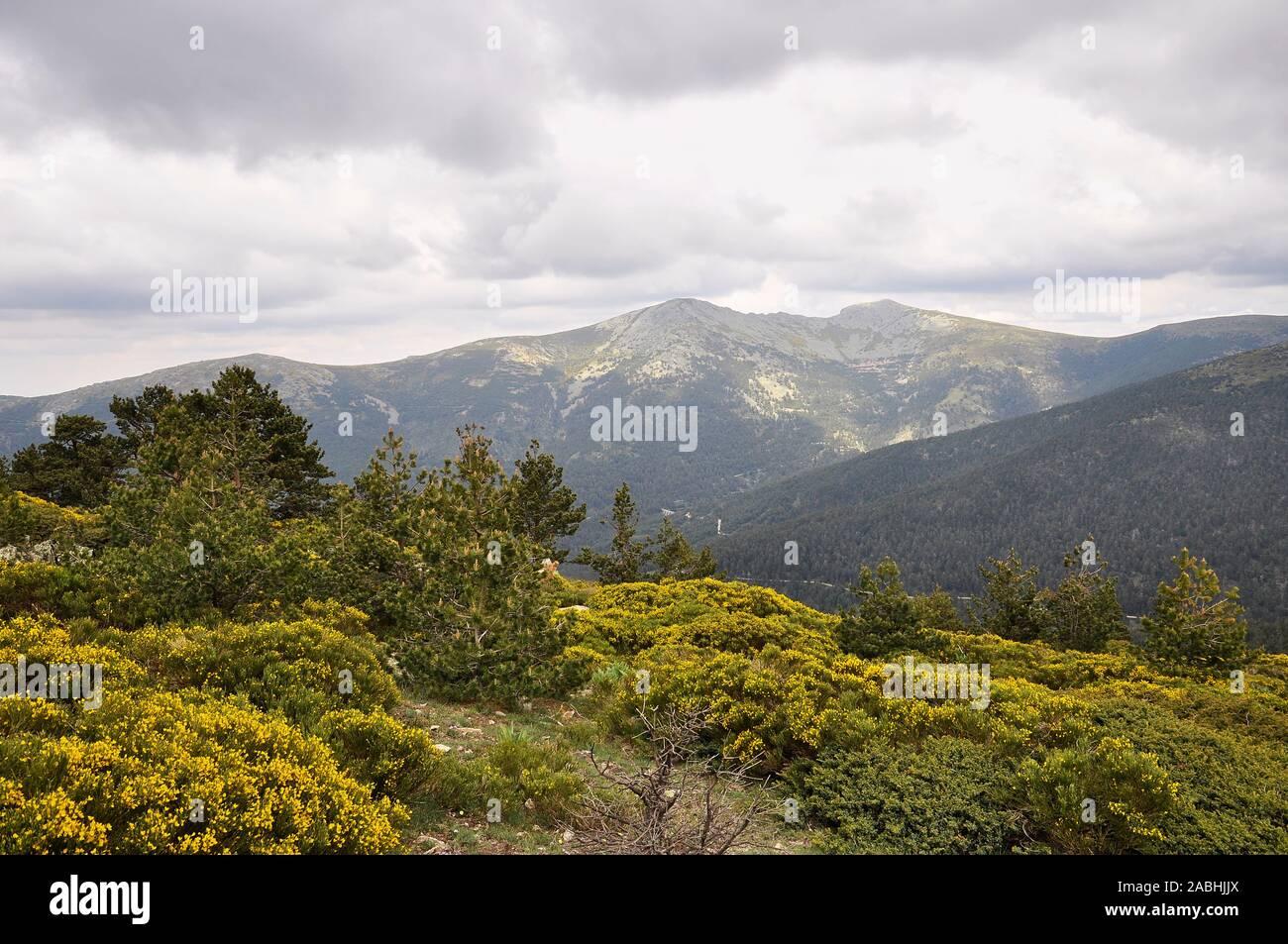 Scenic view of La Mujer Muerta subrange, formed by La Pinareja, Peña el Oso and Pasapán peaks (El Espinar, Guadarrama National Park, Segovia, Spain) Stock Photo