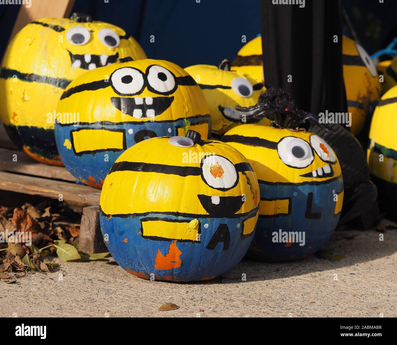 Pumpkins Painted As Minions From Despicable Me In Halloween Scarecrow Exhibit In New Inn Tipperary Ireland Stock Photo Alamy