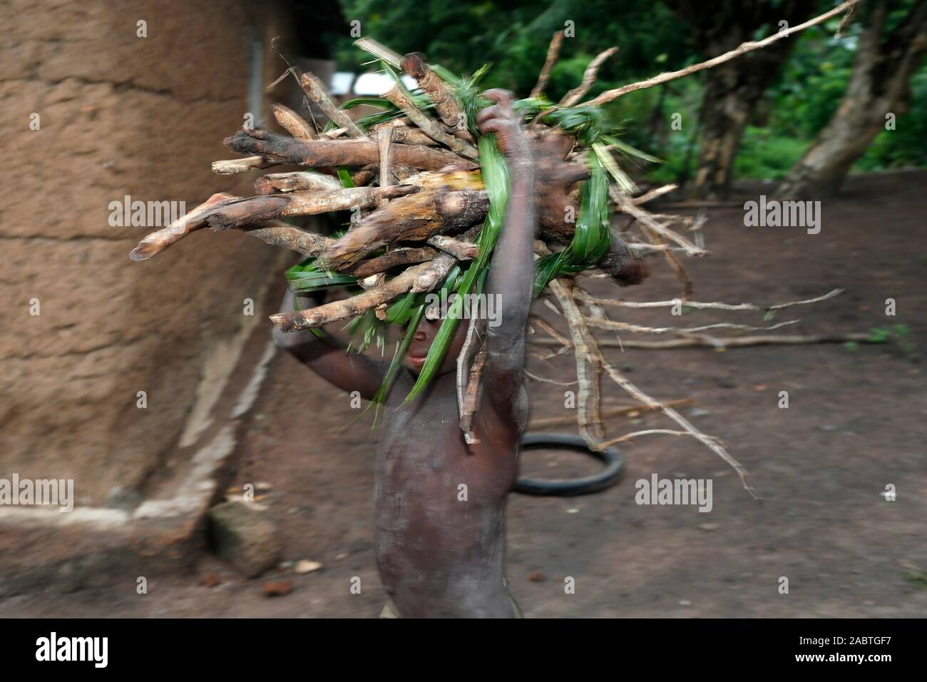 African village. Boy carrying firewood on his head.  Daily life.  Datcha-Attikpaye. Togo. Stock Photo