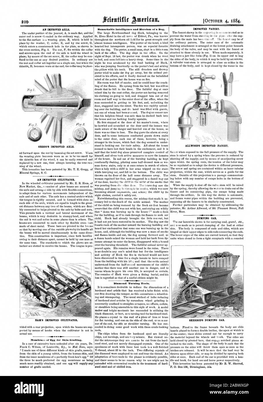 Membrane of Egg for Skin Grafting. Remarkable Intelligence and Heroism of a Dog. 4  Siv Diamond Turning Tools., scientific american, 1884-10-04 Stock Photo