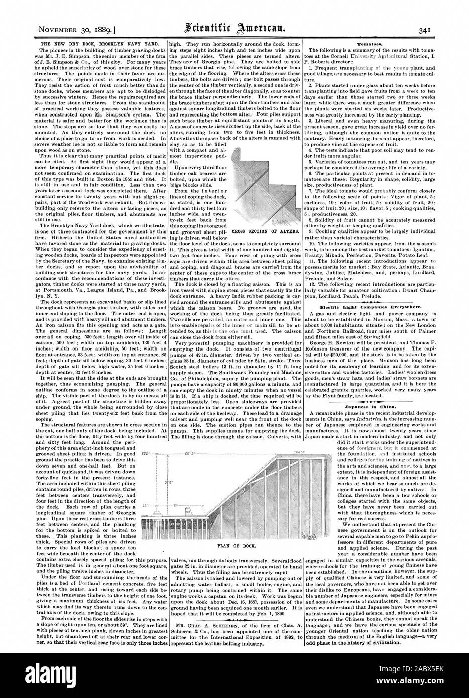 THE NEW DRY DOCK BROOKLYN NAVY YARD. Tomatoes. Electric Light Companies Everywhere. Japanese in China. CROSS SECTION OF ALTERS. PLAN OF DOCK., scientific american, 1889-11-30 Stock Photo