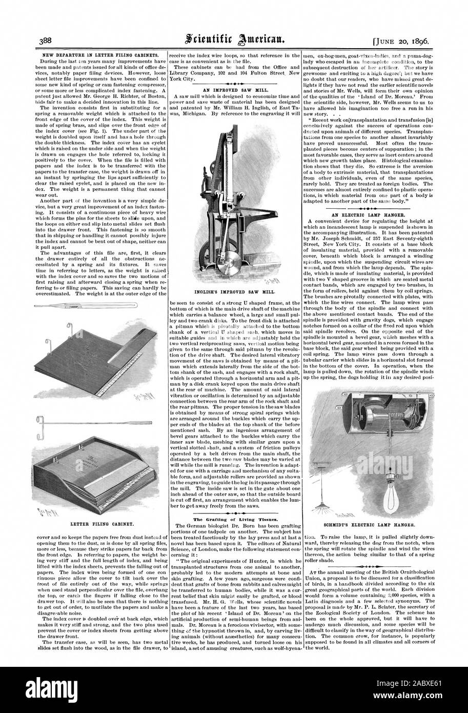 NEW DEPARTURE IN LETTER FILING CABINETS. AN IMPROVED SAW MILL. INGLISH'S IMPROVED SAW MILL. The Grafting of Living Tissues. 1  AN ELECTRIC LAMP HANGER. SCHMIDT'S ELECTRIC LAMP HANGER. LETTER FILING CABINET., scientific american, 1896-06-20 Stock Photo