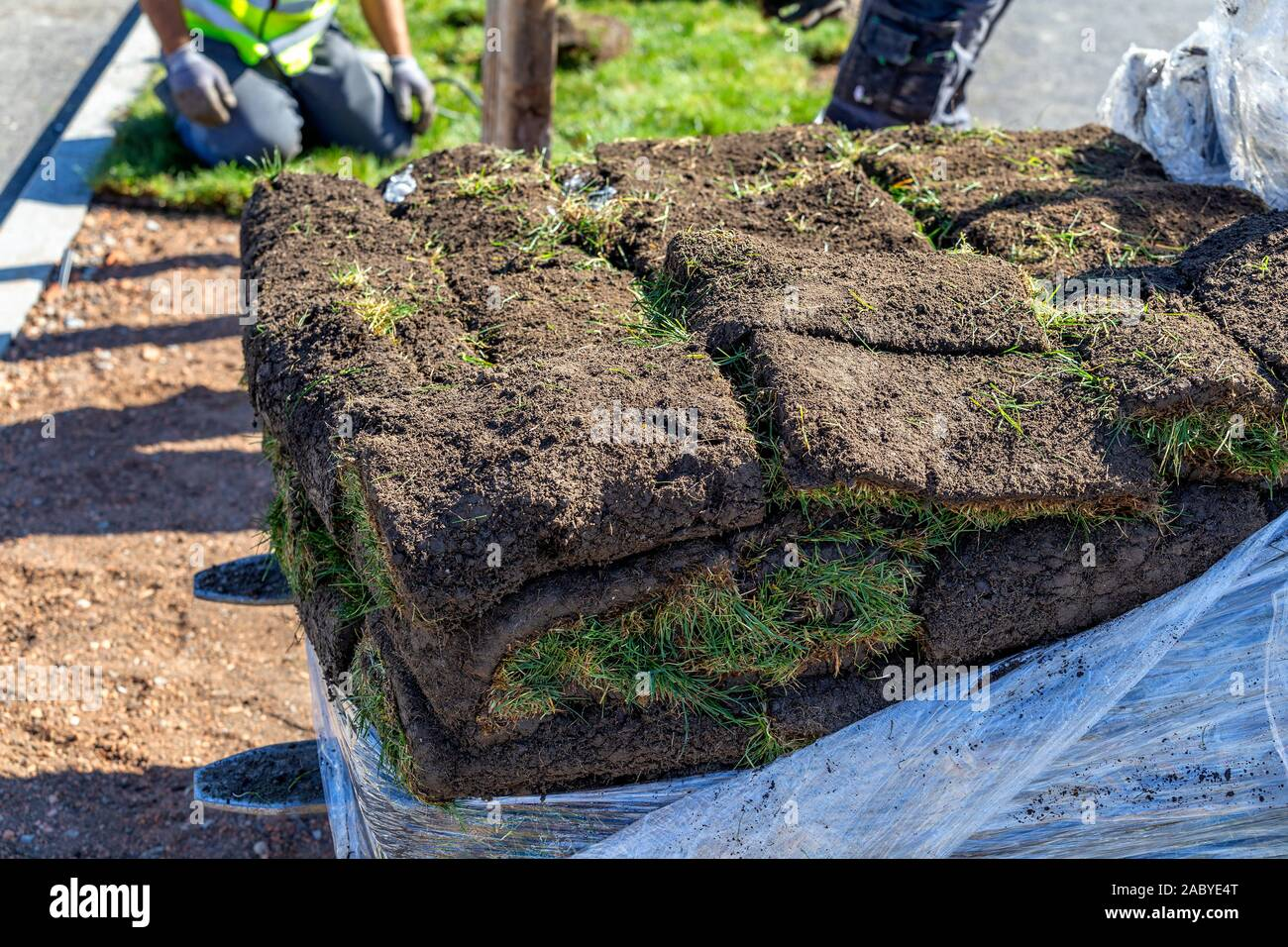 Pile Of Sod Rolls For New Lawn Grass Installation Stock Photo