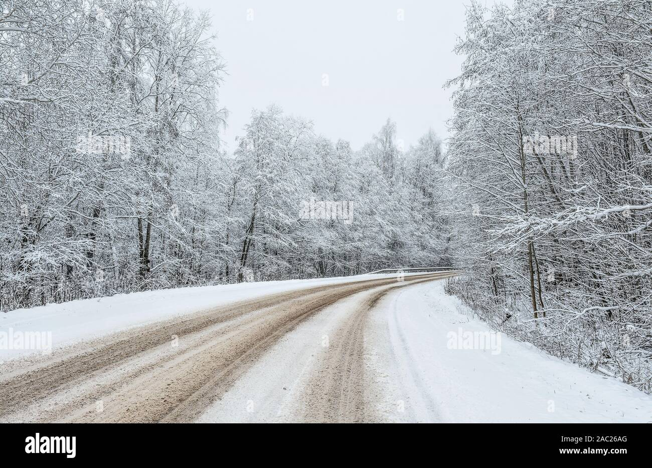 Road on a snowy December day in the countryside. Stock Photo