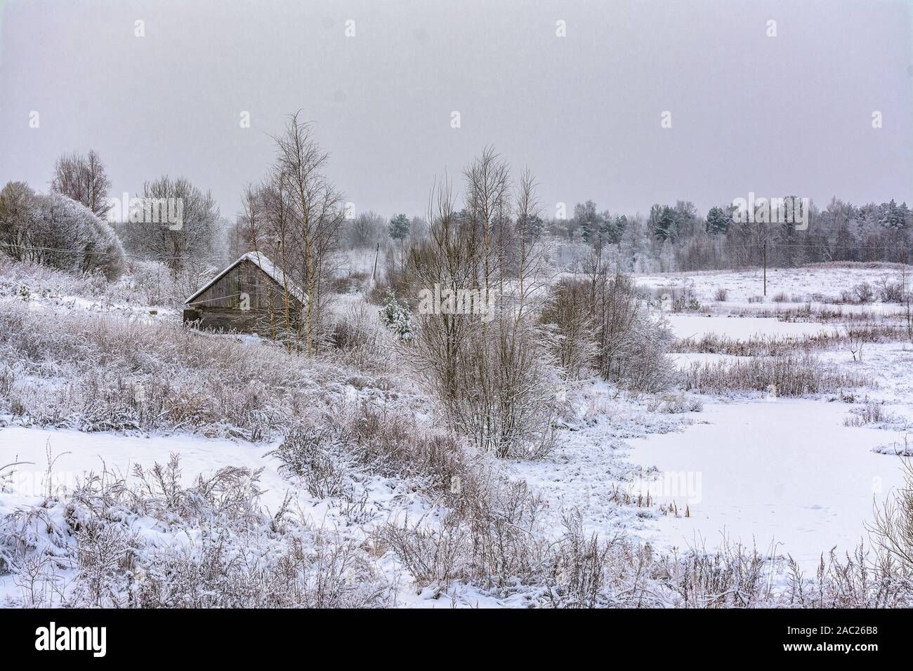 Snowy December day in the countryside. Stock Photo