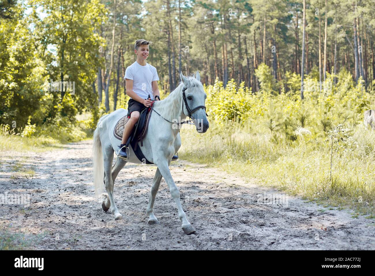 Horse Love Teen Boy Horse High Resolution Stock Photography And Images Alamy