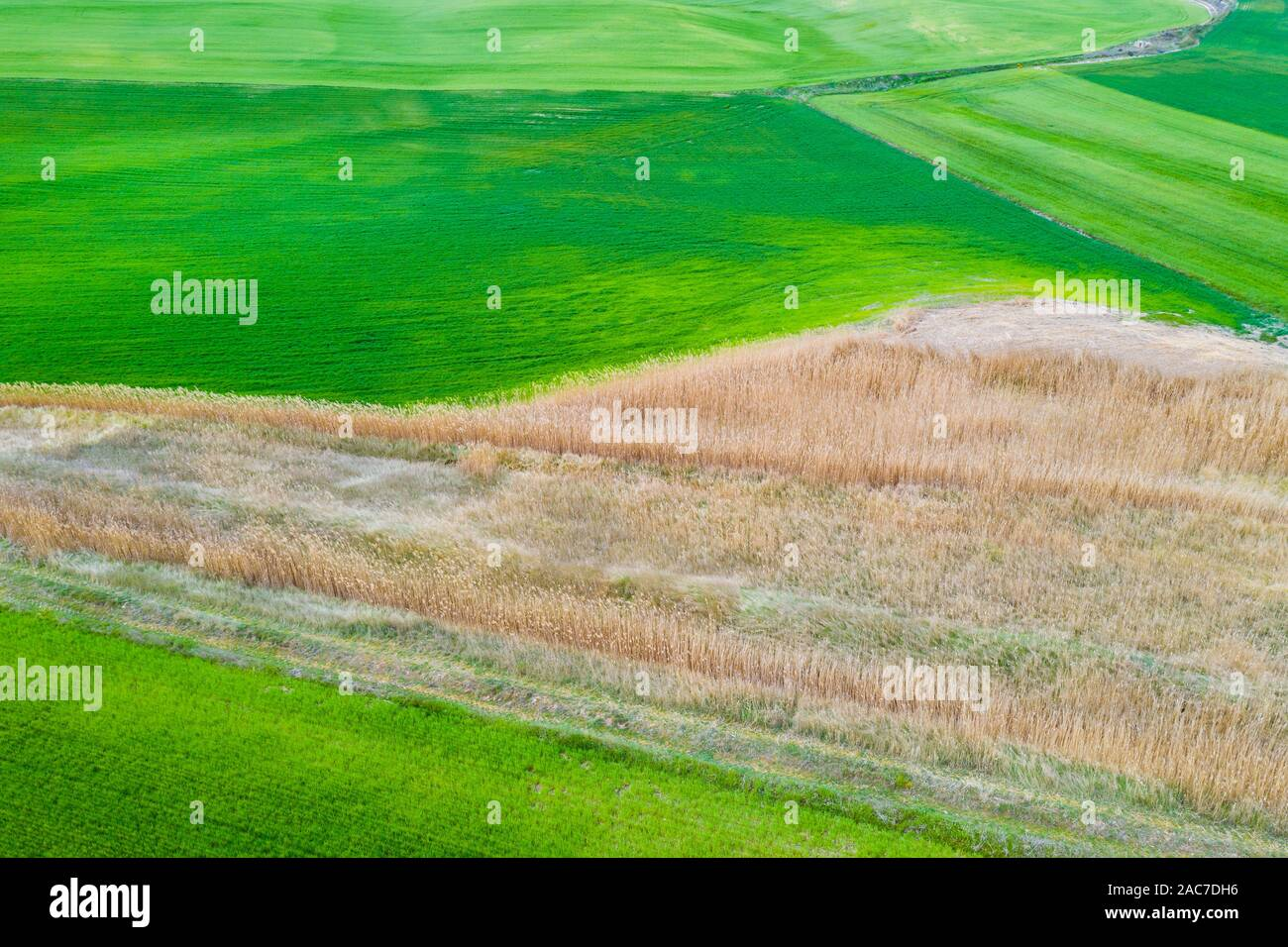 Farming area. Navarre, Stock Photo