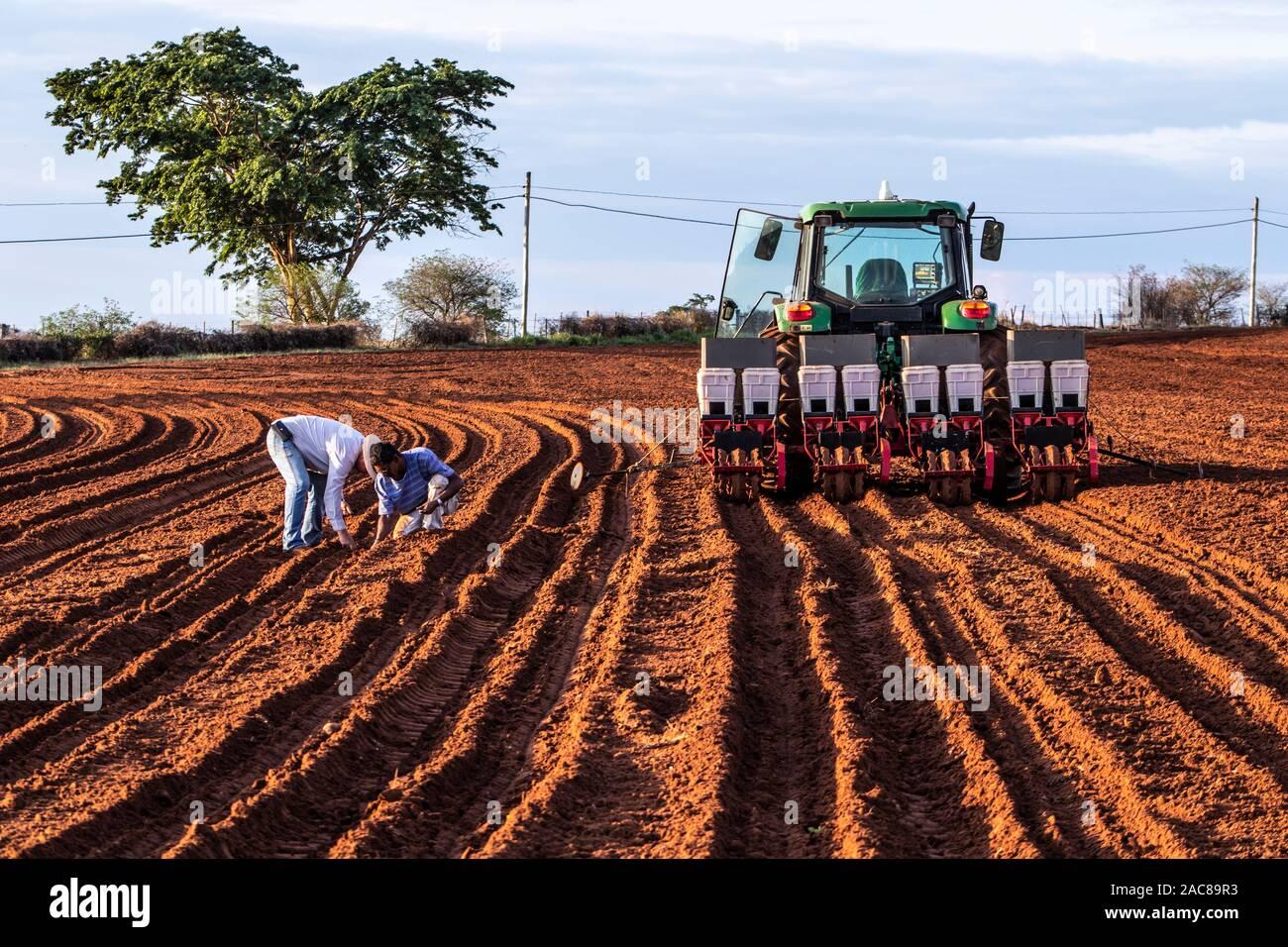 Herculândia São Paulo fonte: c8.alamy.com