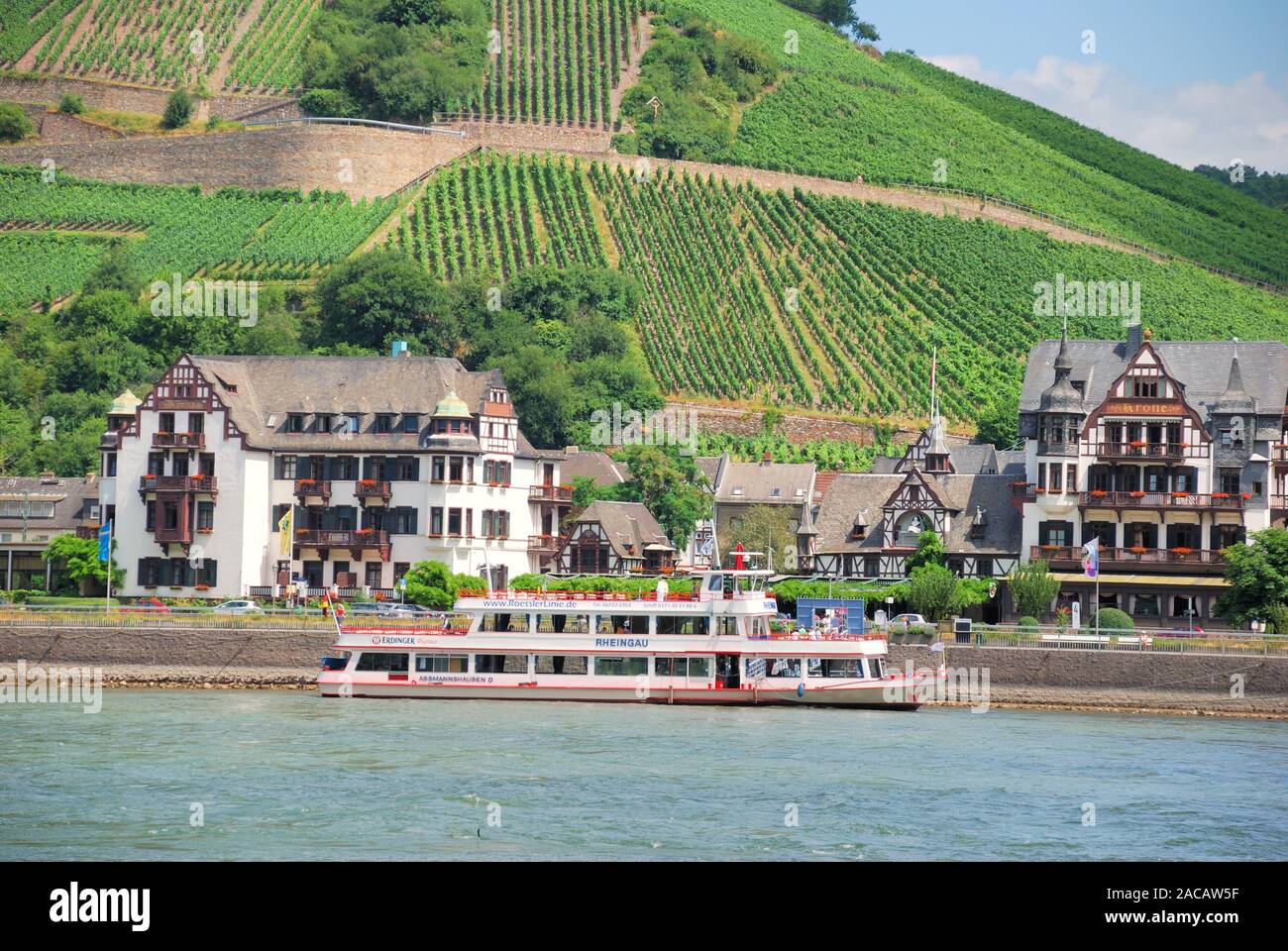 View of Assmannshausen and vineyards, Romantic Rhine Valley, UNESCO World Heritage Upper Middle Rhine Valley, Rhineland-Palatina Stock Photo