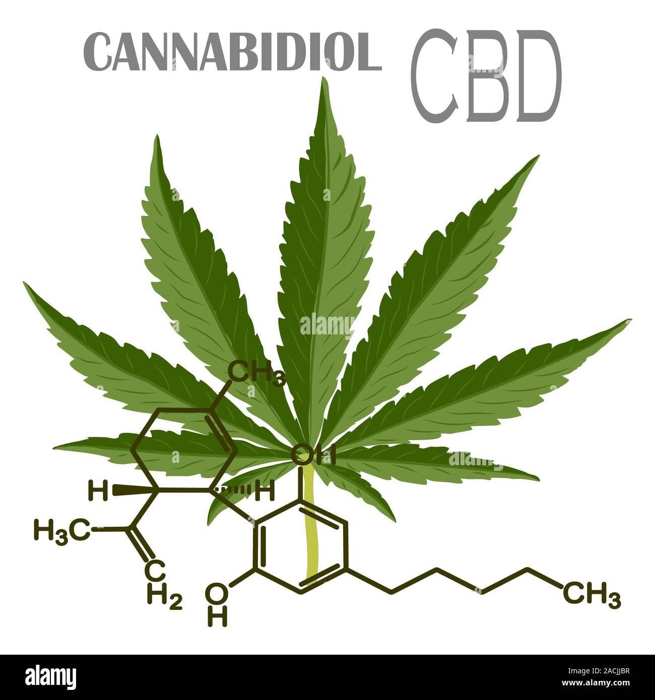 CBD Cannabis Formula. Structural model of cannabidiol and tetrahydrocannabinol molecule. Medicinal hemp. Medical marijuana, despancery business, canna Stock Photo