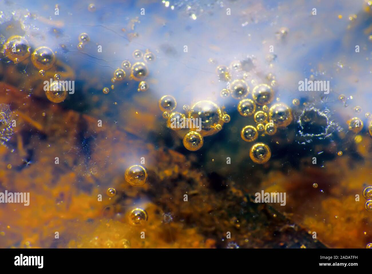 stagnant water body and its surface Stock Photo
