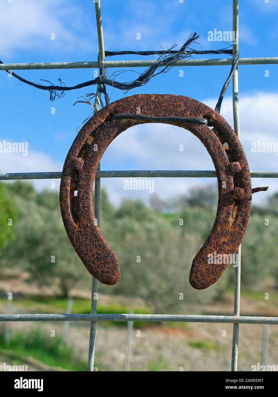 Rusty horse shoe hanging on a fence, paddock close  Algaida, Mallorca, Balearic islands, Spain Stock Photo