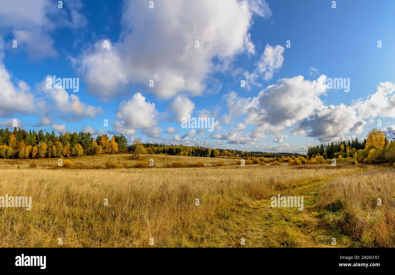 Autumn landscape in Karelia with a field, houses and lakes.  Karelia, Russia. 06.10, 2019. Stock Photo