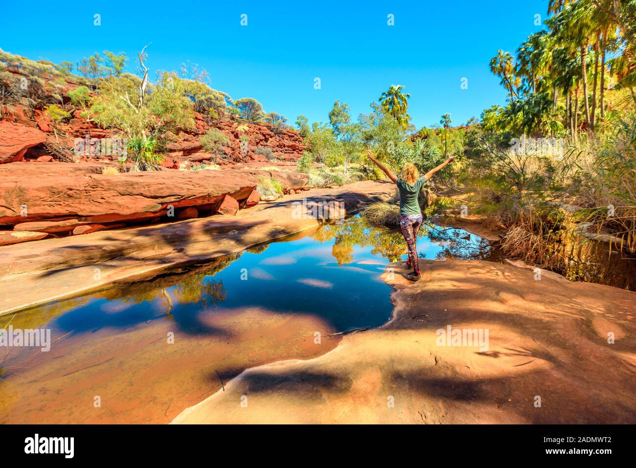 Carefree woman enjoying sandstone cliffs and red Cabbage Palm reflecting on waterhole in Palm Valley Oasis, Finke Gorge National Park. Tourism Outback Stock Photo