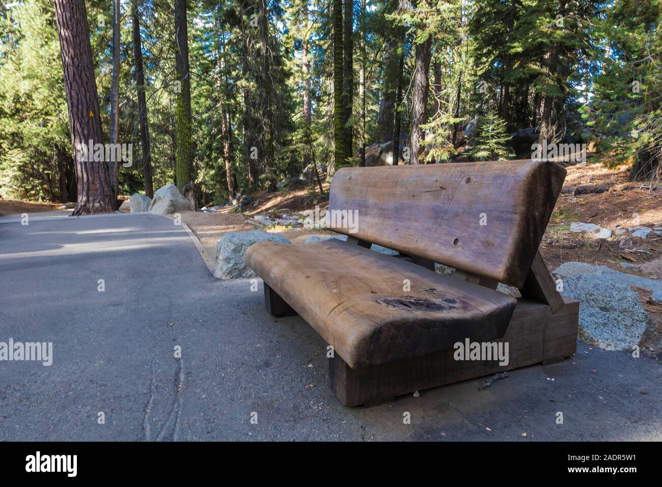 Rustic bench made of huge tree trunks along the trail to the General  Sherman Tree in Sequoia National Park, California, USA Stock Photo