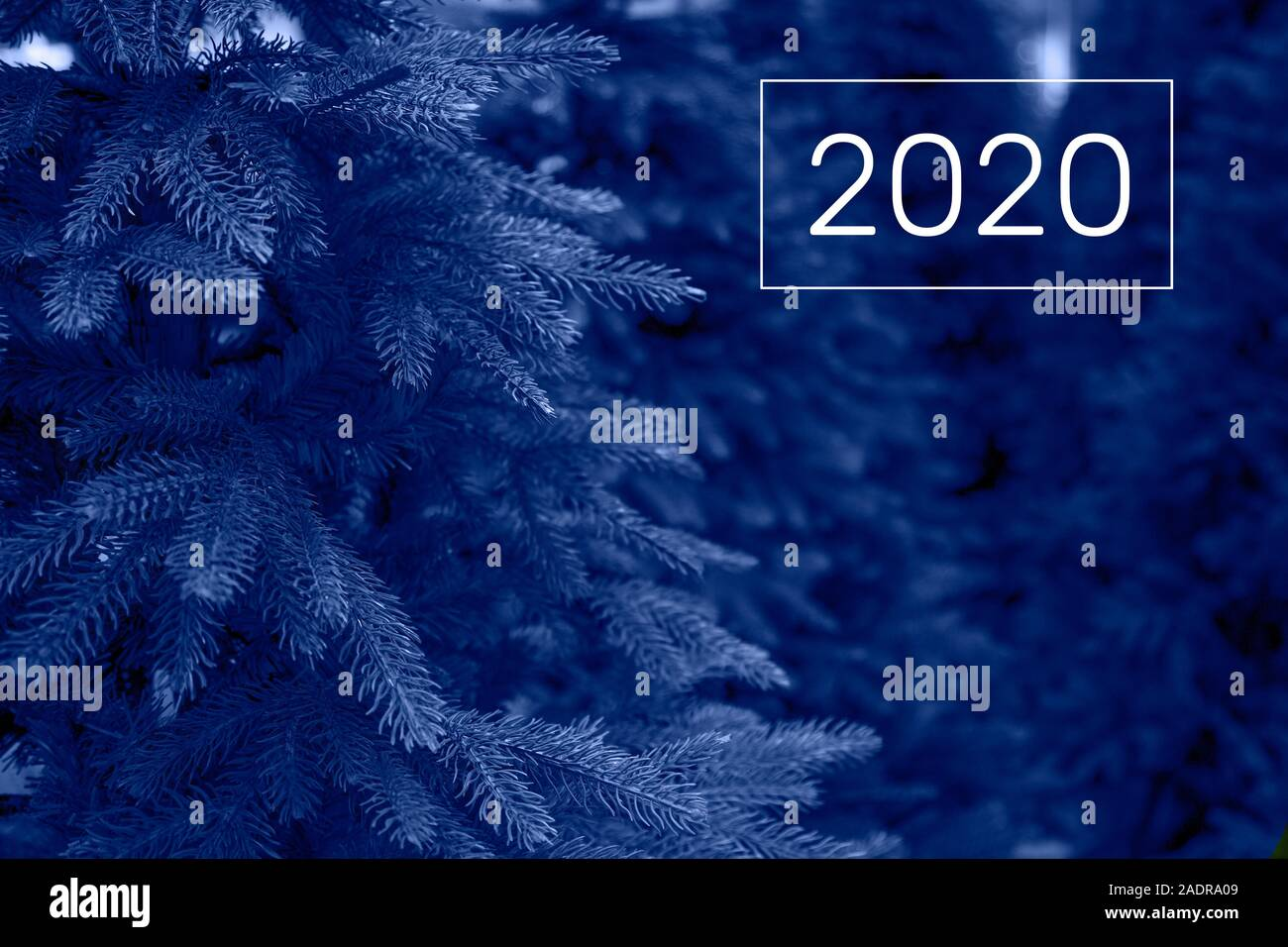 Christmas Trees For Sale In The Shop Color Of The Year 2020 Stock Photo Alamy