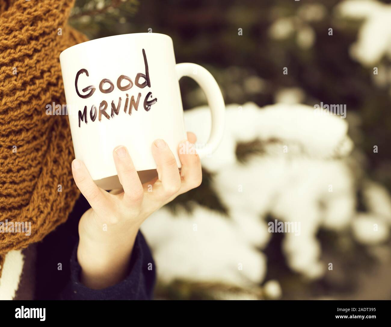 Good Morning Winter High Resolution Stock Photography And Images Alamy