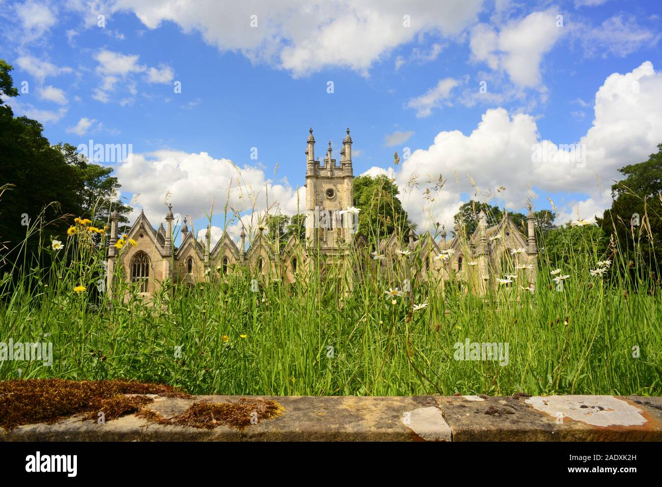 wild flowers by aberford almshouses designed by george fowler built in 1844 by Elizabeth and Mary Isabella Gascoigne Aberford yorkshire uk Stock Photo