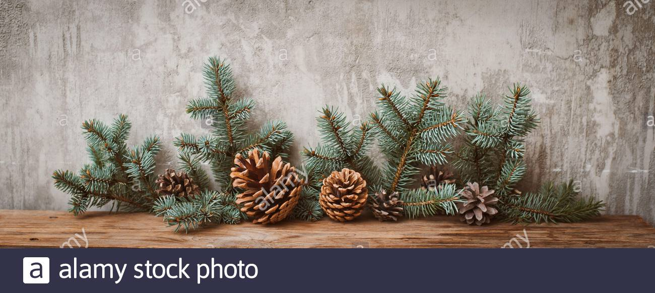 Christmas Tree Branches With Cones On A Dark Wooden Board Against A Gray Concrete Wall Rustic New Year Decorations In Retro Style Copy Space For Tex Stock Photo Alamy