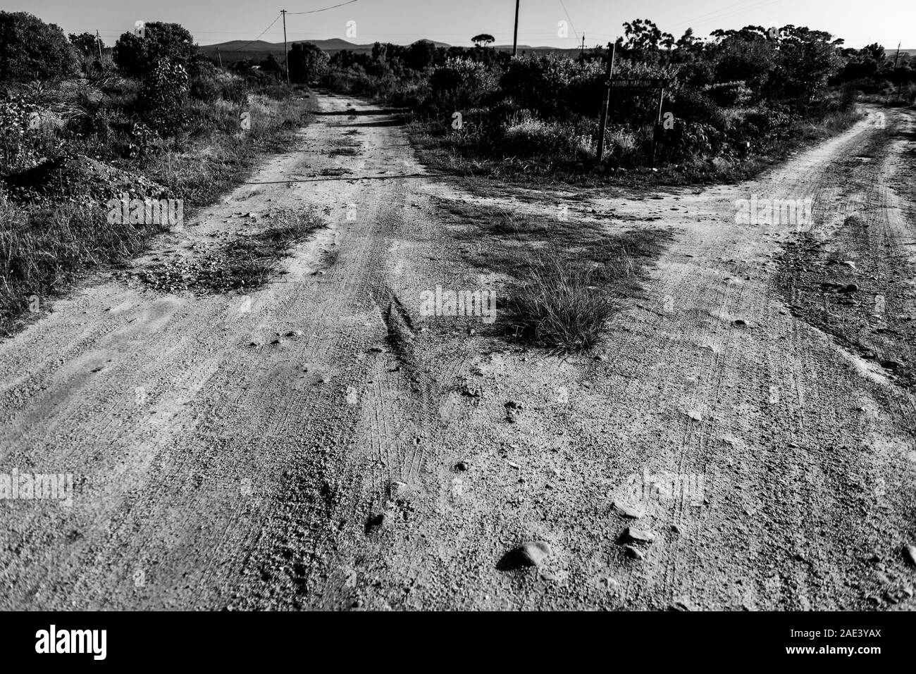 A farm road forks in the Overberg region near Stanford village in South Africa's Western Cape province Stock Photo