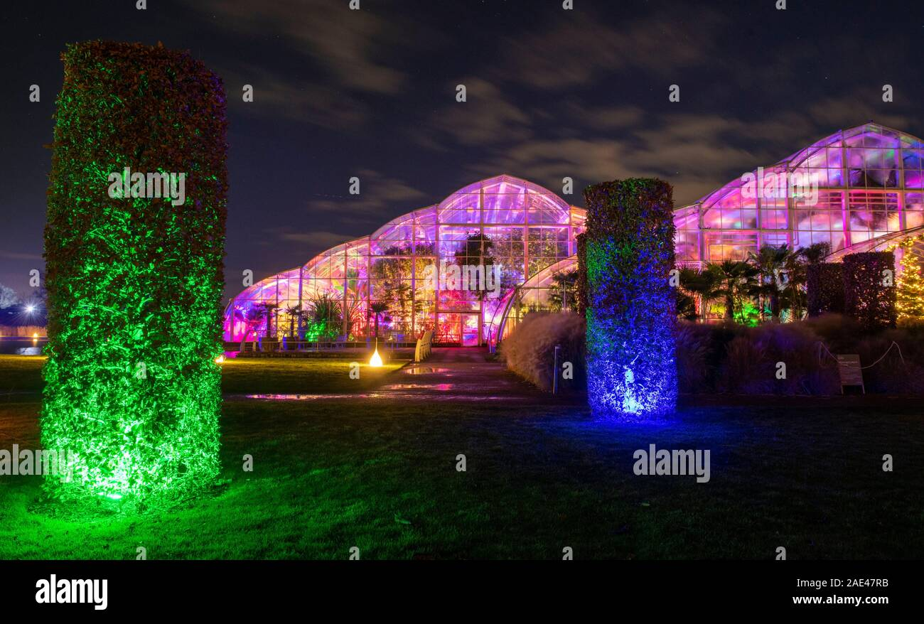 Rhs Wisley Surrey Uk Rhs Gardens Winter Glow 2019 6th December 2019 Preview Of Enchanting Trail With Dazzling Light Installations Themed Around The Four Seasons From Spring Daffodils Along Jellicoe Canal To