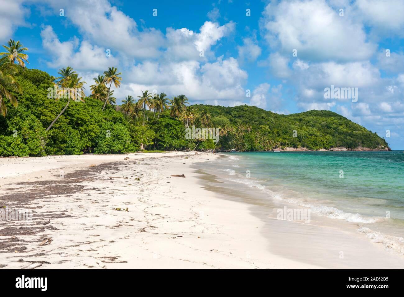 Manzanillo beach on the island of Providencia in Colombia. Stock Photo