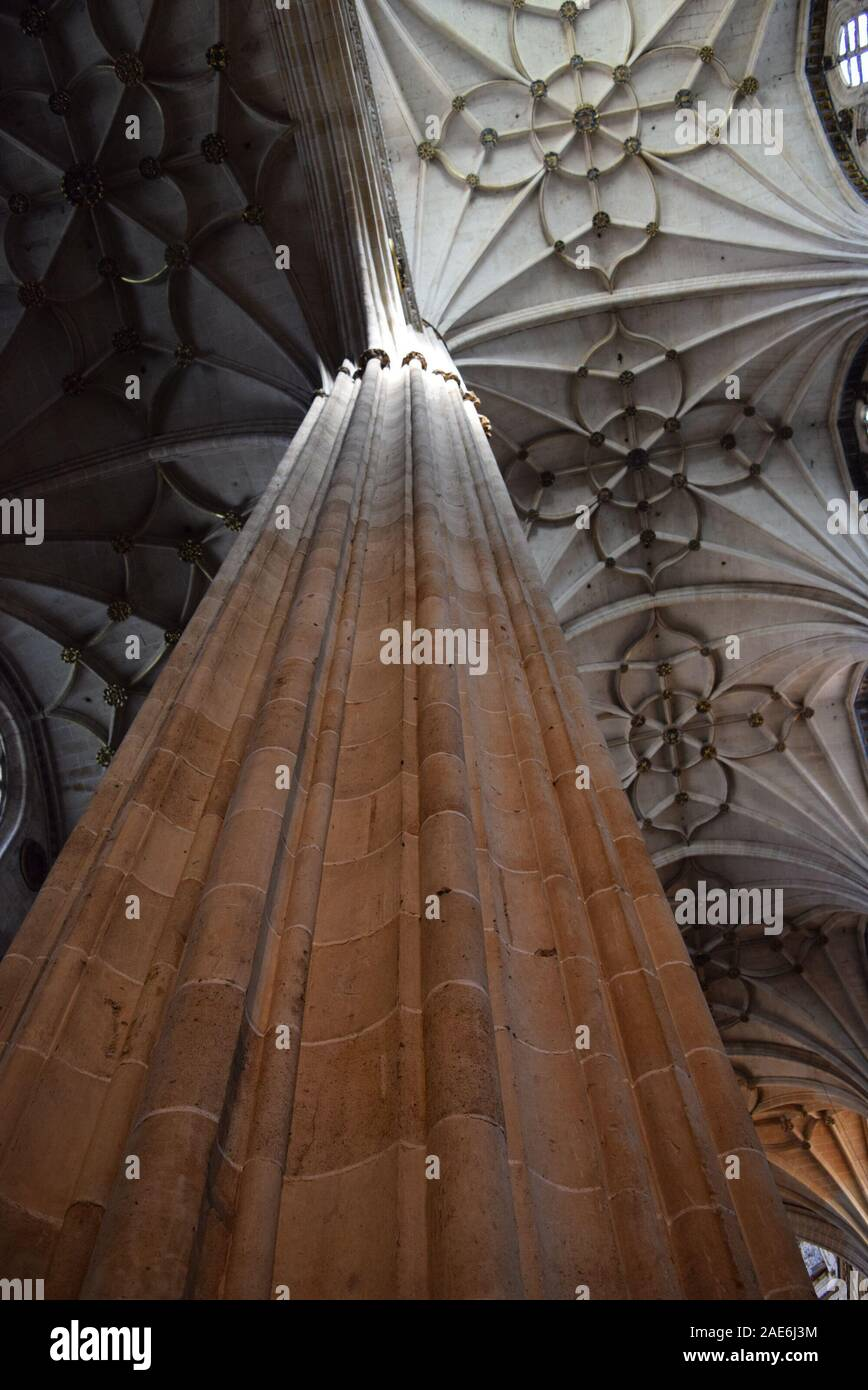 Looking up at the vaulted ceilings inside the cathedral of Salamanca. Stock Photo
