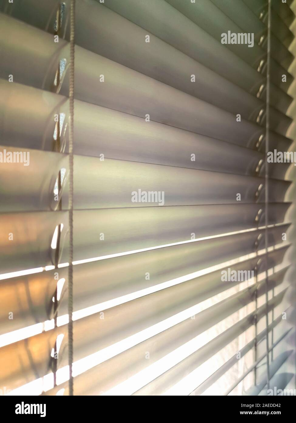 Close Up Louvers Shade Blind Or Shutters Background