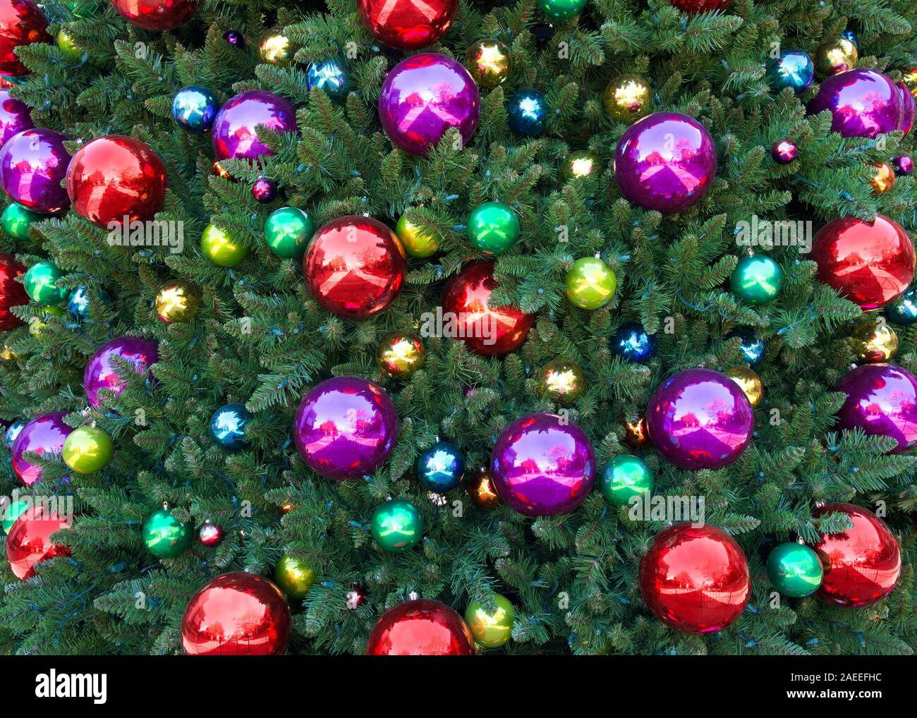 Close Up On Large Christmas Tree With Reflective Ball Ornaments Red Green Gold Purple Festive Holiday Lights Stock Photo Alamy