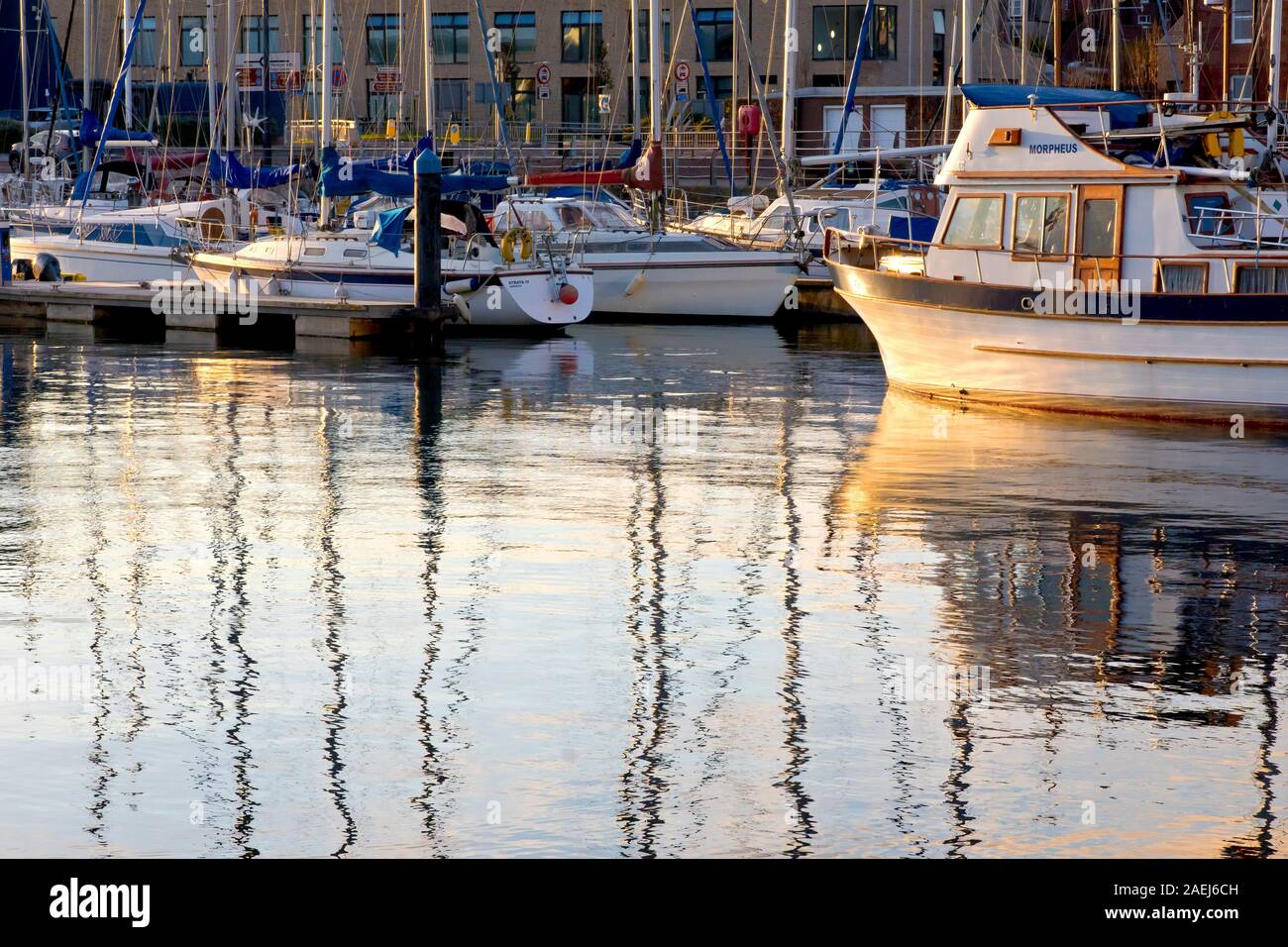 The marina at Arbroath harbour, filled with yachts and pleasure craft, lit by the warm directional light of a low sun at the end of the day. Stock Photo
