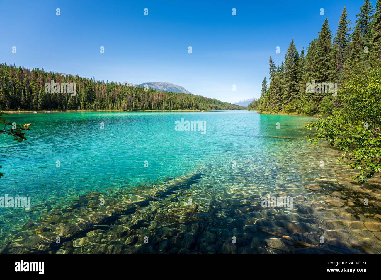 Turquoise Lake, Valley of the Five Lakes, Jasper National Park, back mountains, Alberta, Canada Stock Photo