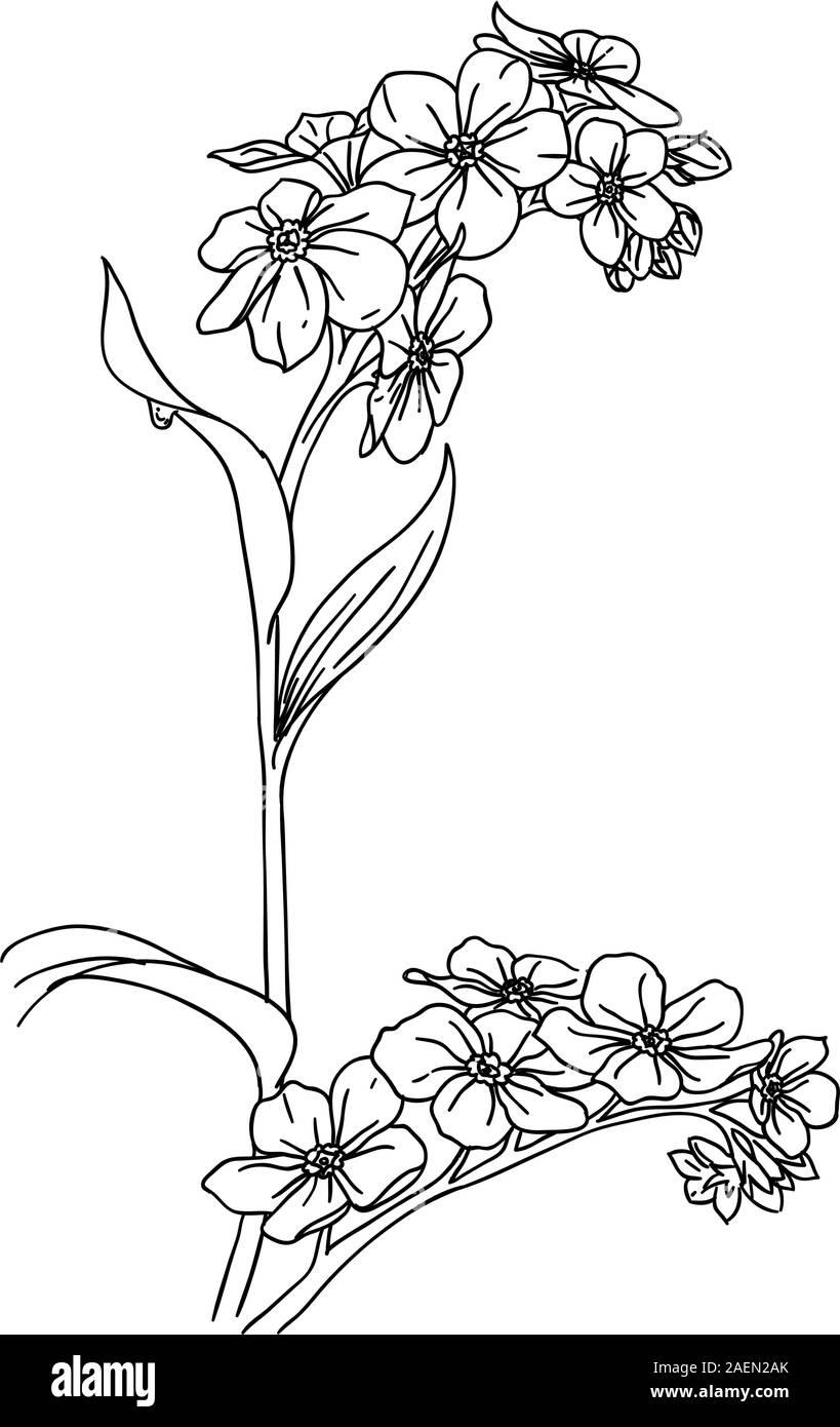 NOV 20% SALE Tulip Clipart Flower Clip Art Easter Vector   Etsy
