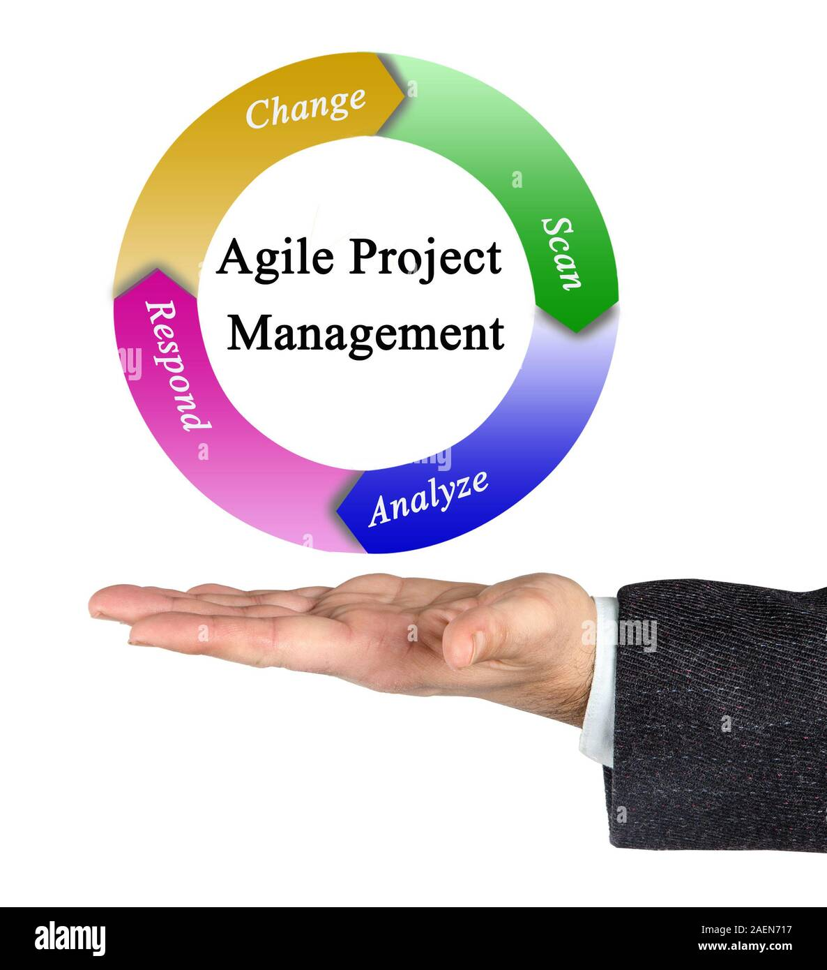 Agile Management agile management cut out stock images & pictures - alamy