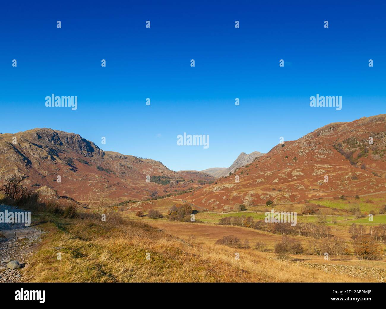 Looking over to Wetherlam Hill and up  near Elterwater, Lake District, Cumbria, England Stock Photo
