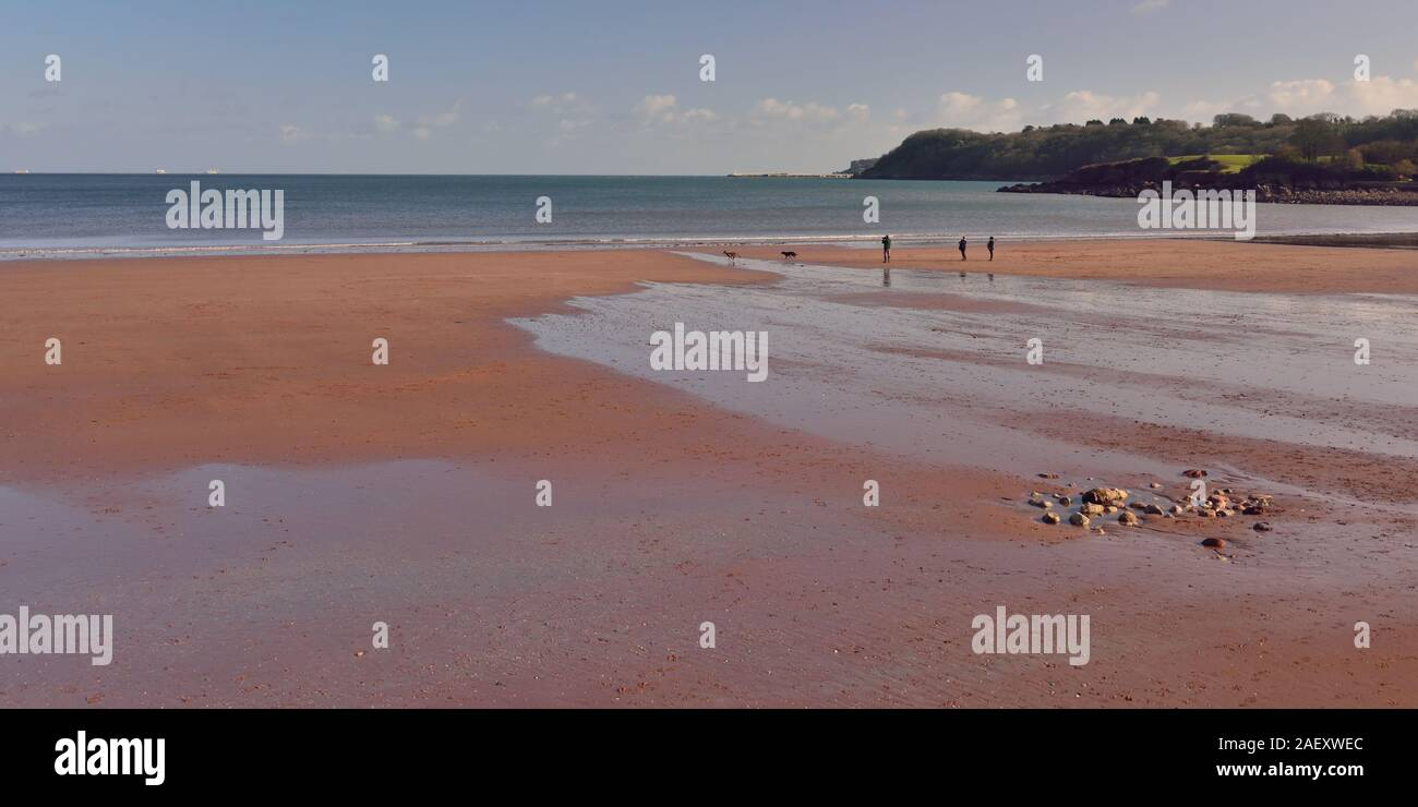 Low tide at Broadsands beach. Stock Photo
