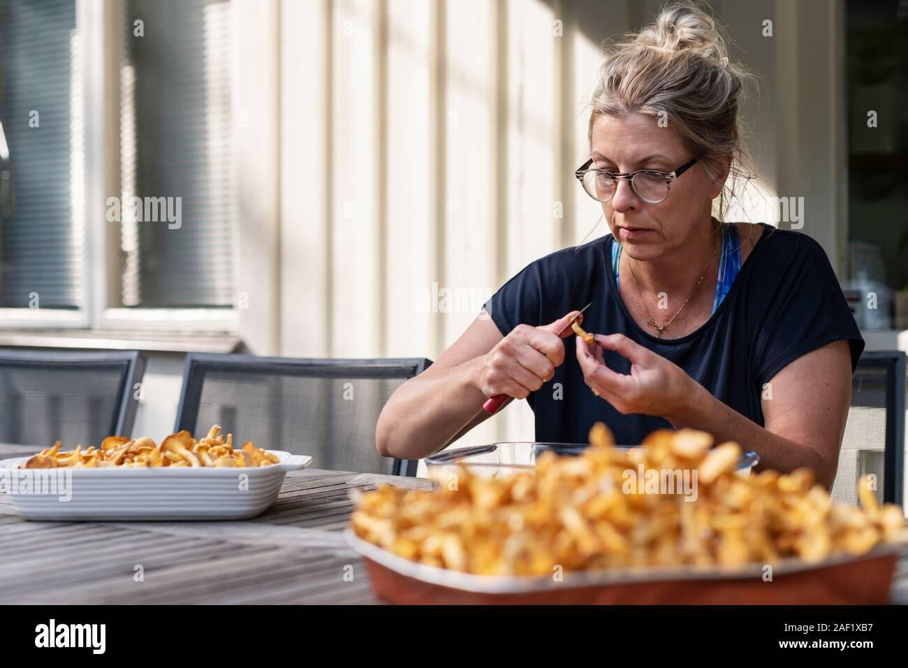 Woman cleaning chanterelles mushrooms Stock Photo