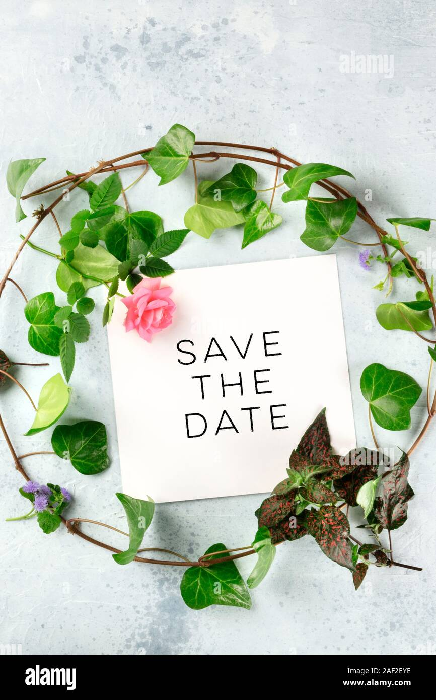 Meadow Rose Save the Date