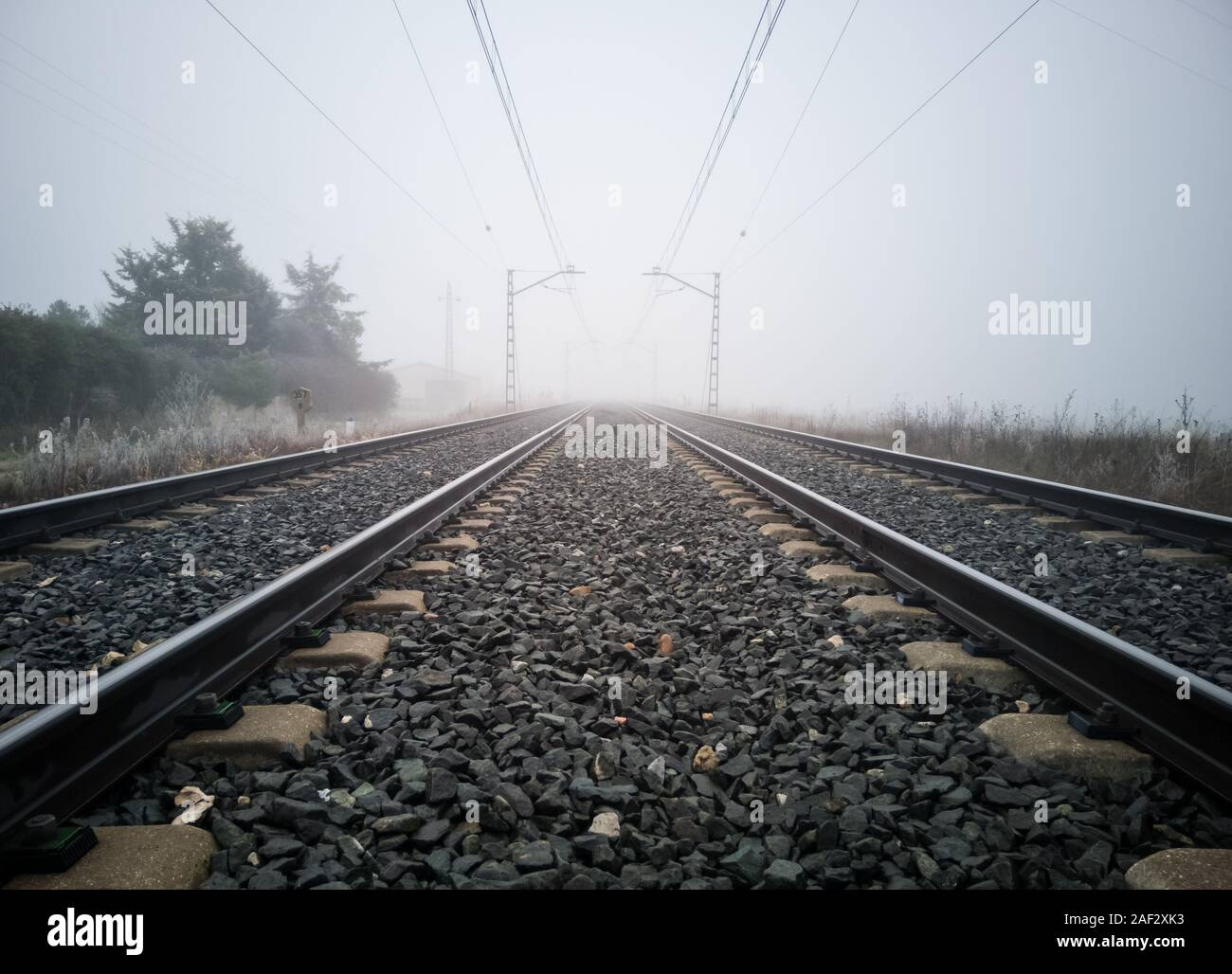 Train tracks and catenary posts disappear into thick fog in the country. Train concept Stock Photo