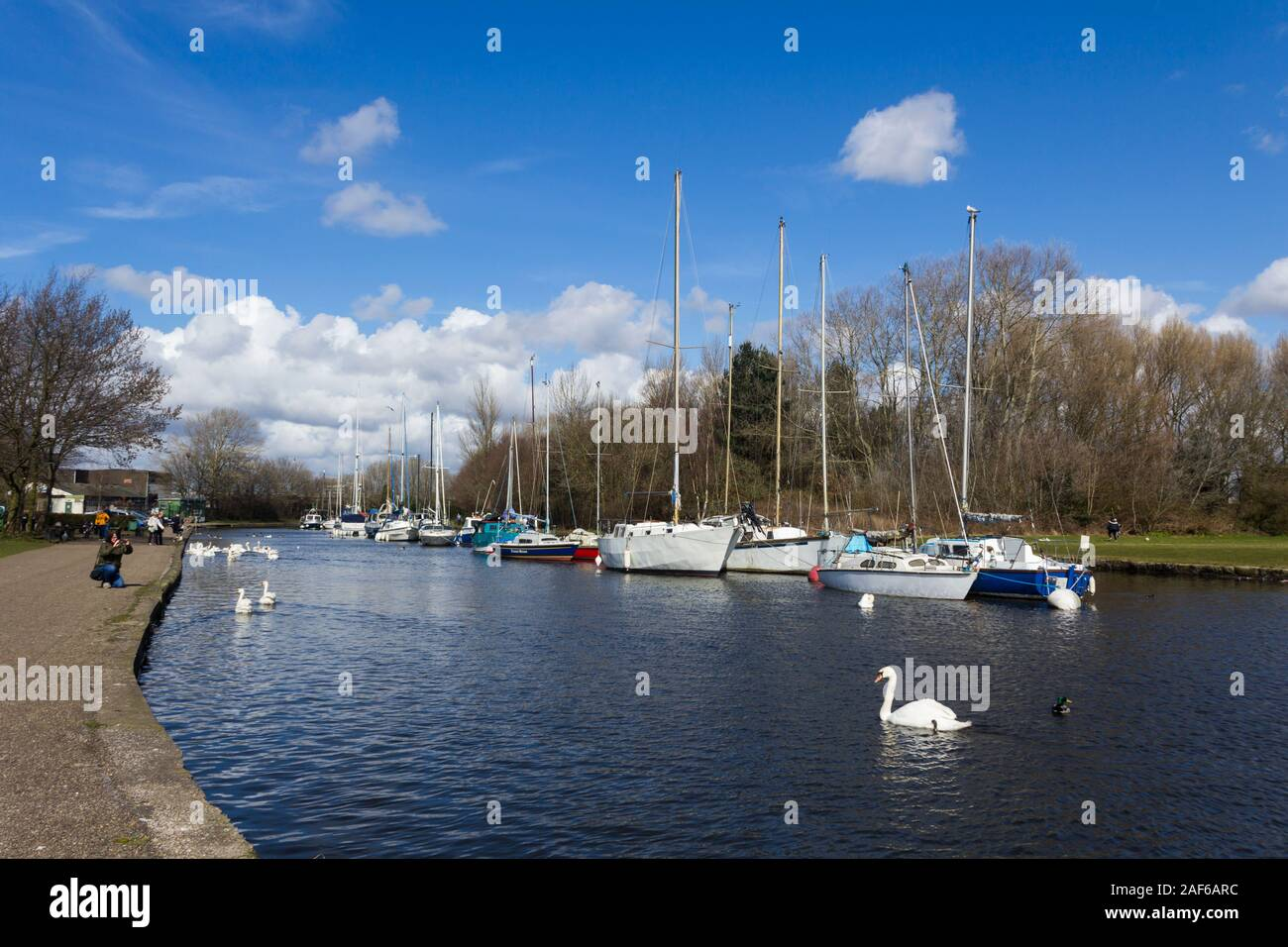 St. Helens canal (originally the Sankey canal) next to Spike Island nature reserve and close to the locks connecting the canal to the River Mersey. Stock Photo