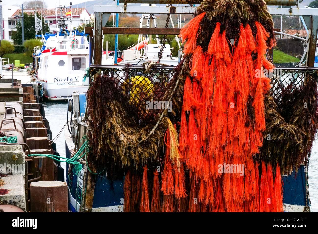 Unloading red algae, fishing harbor of Saint-Jean de Luz, Pyrénées-Atlantiques, France Stock Photo