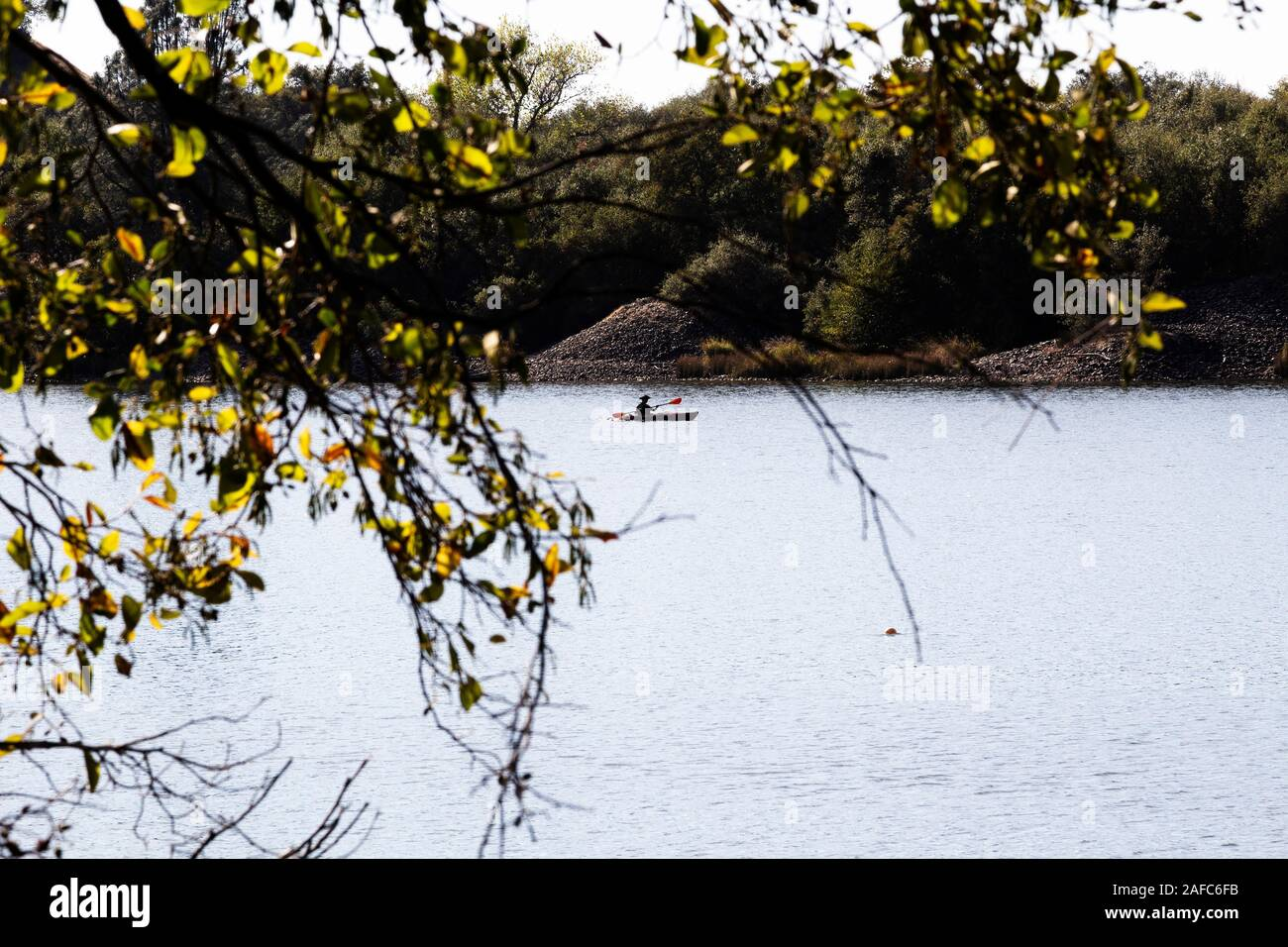 Single Distant Kayak Paddling On River Seen Through Branches Of Tree Stock Photo