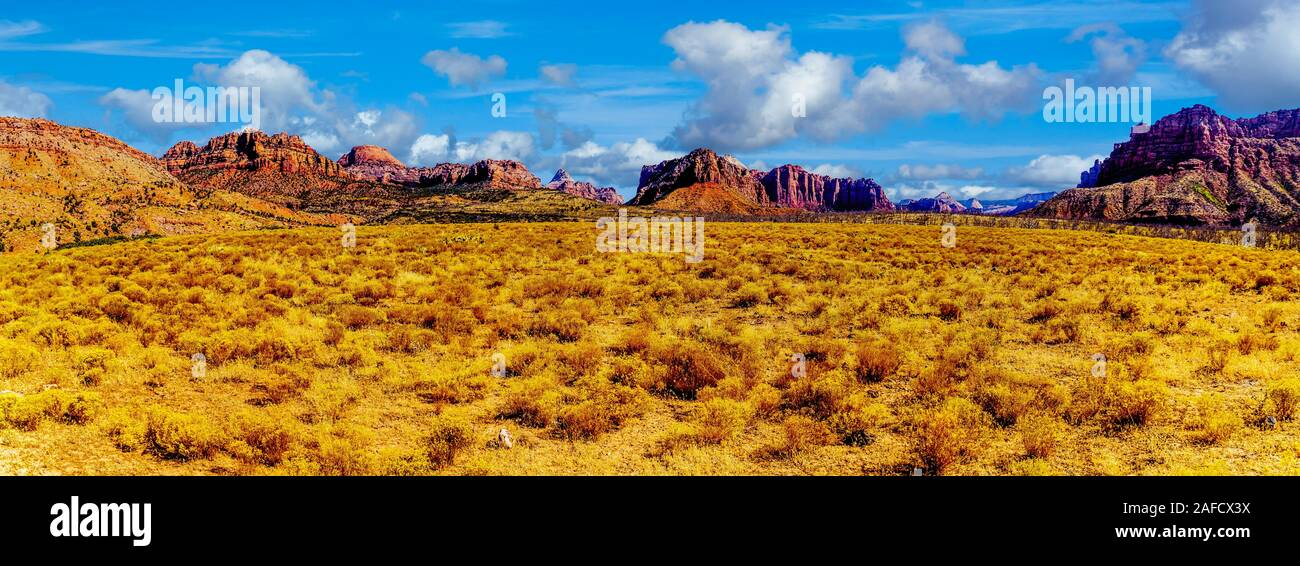 Panorama View of the Red Sandstone Mountains seen from the Kolob Terrace Road to the 8,000 ft altitude of the Kolob Plateau in Zion National Park, UT Stock Photo