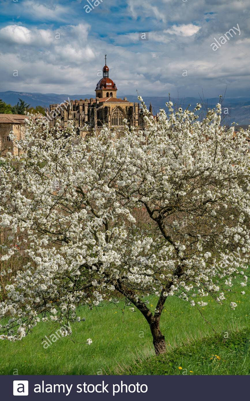 Saint-Antoine-l'Abbaye during springtime, when the Abbey church seems to emerge from blooming apple trees Stock Photo